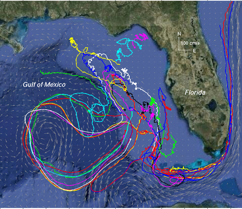 Tracking and predicting the Deepwater Horizon (Macondo Well ... on