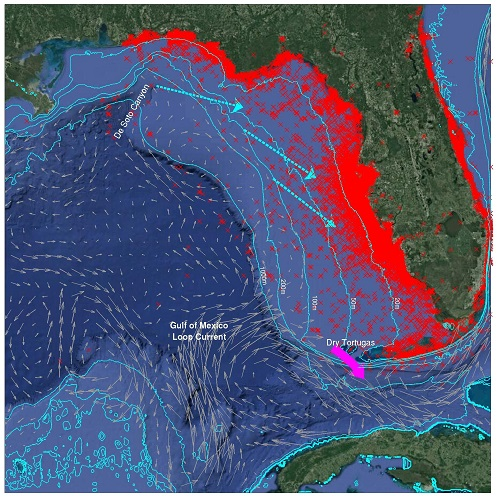 Seasonal Prediction Of Major Red Tide Events